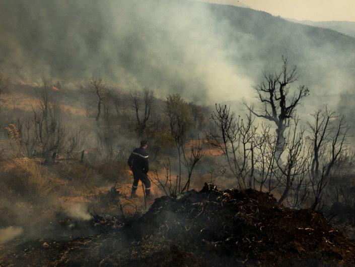 terre Brulée